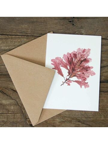Sea Oak Greetings Card