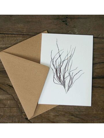 Slender Wart Weed Greetings Card