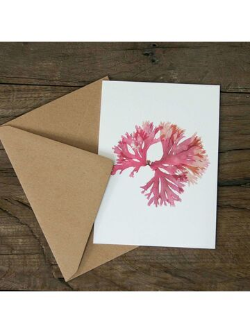 Beautiful Fan Weed Greetings Card