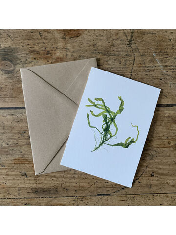 Gut Weed Greeting Card