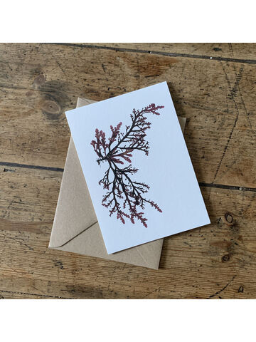 Royal Fern Weed Greeting Card