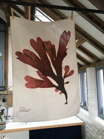 Linen Union Tea Towel Dulse