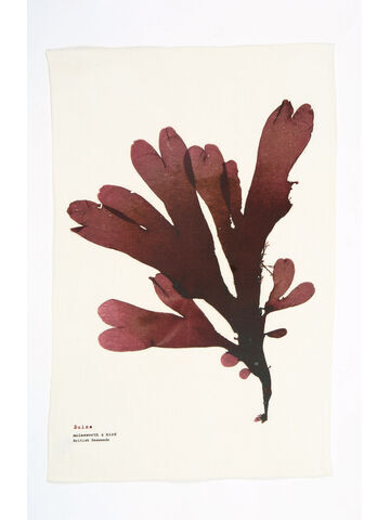 Seaweed Print Linen Union Tea Towel - Dulse