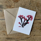 Rosy Fan Weed Greeting Card additional 1