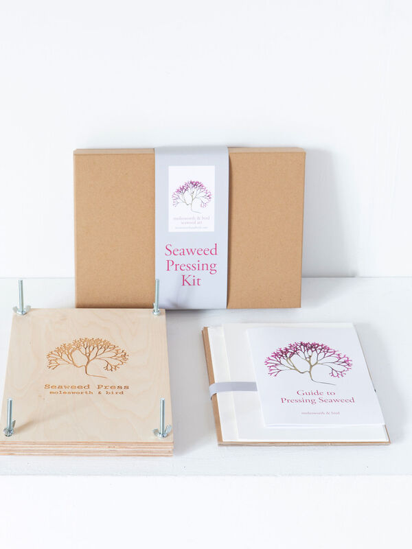 Seaweed Pressing Kits