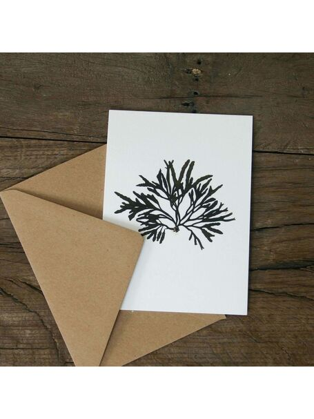 Channel Wrack Greetings Card
