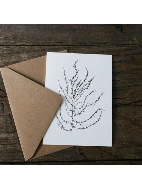 Wire Weed Greetings Card