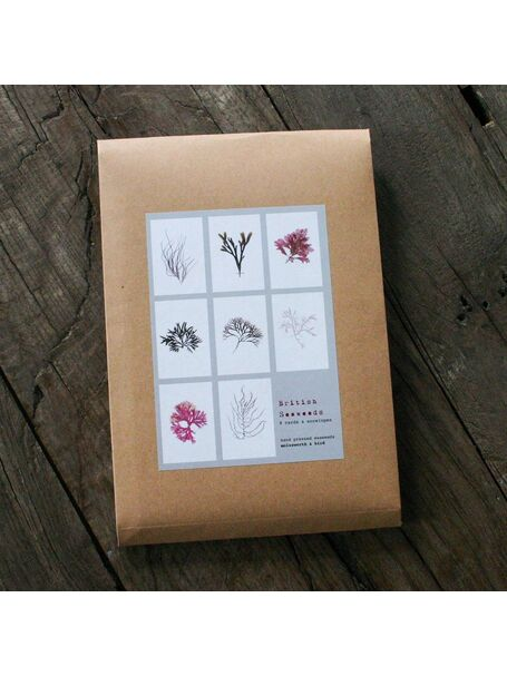 Pack of 8 British Seaweeds Greetings Cards - Set 1